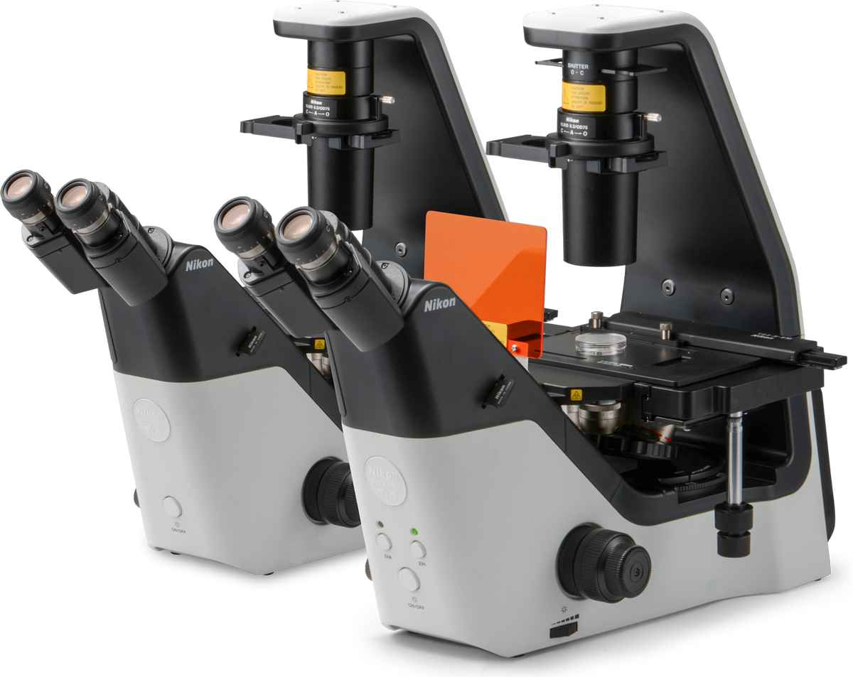 Eclipse Ts2 | Inverted Microscopes | Products | Nikon